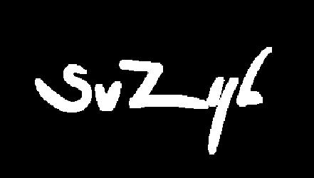 Sander van Zijl